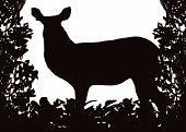 Waterbuck in Isolated bush or jungle frame Vector (EPS) poster