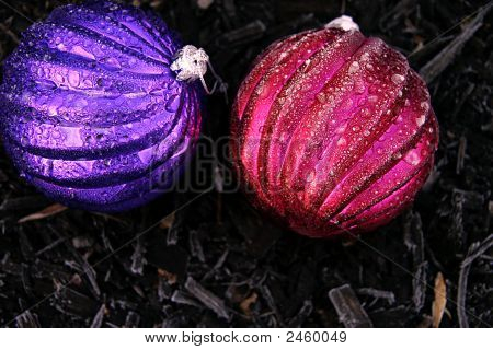 Frost-Covered Decorations