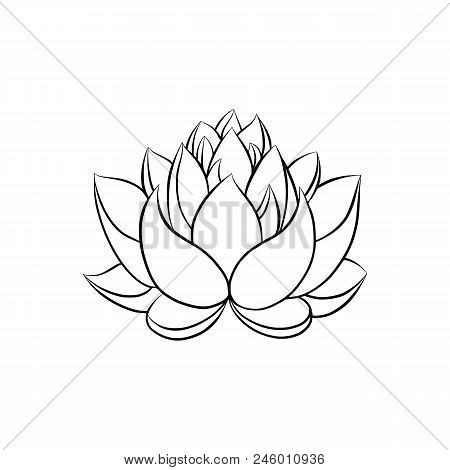 Lotus Lily Water Flower In A Vintage Woodcut Engraved Etching Style