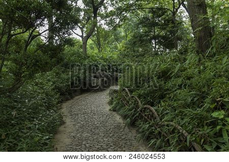 Garden Path In China So Beautiful So Tranquil