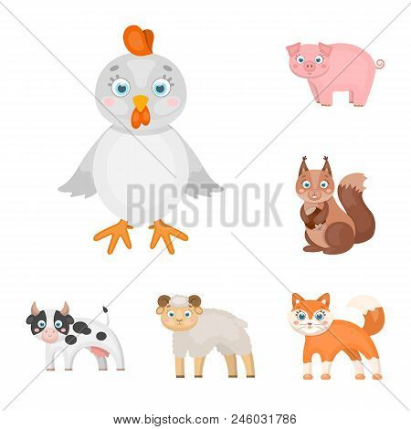 Toy Animals Cartoon Icons In Set Collection For Design. Bird, Predator And Herbivore Vector Symbol S