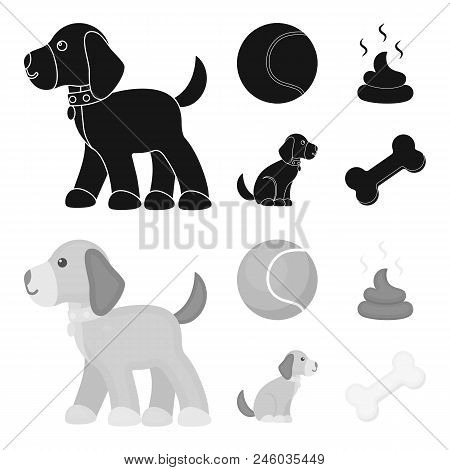 Dog Sitting, Dog Standing, Tennis Ball, Feces. Dog Set Collection Icons In Black, Monochrome Style V