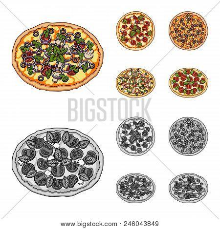 Pizza With Meat, Cheese And Other Filling. Different Pizza Set Collection Icons In Cartoon, Monochro