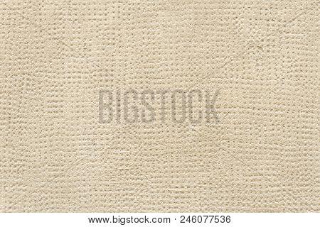 Light Brown Textured Cement Wall. Close Up