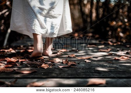 Low Angle View Of Beautiful Mysterious Woman In White Dress Walking Barefoot On The Old Wooden Bridg