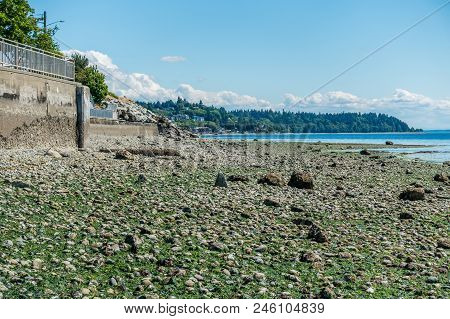 A View Of A Seawall And The West Seattle Shoreline At Low Tide.