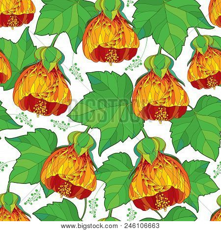 Vector Seamless Pattern With Outline Orange Abutilon Or Indian Mallow Flower And Ornate Green Leaf O