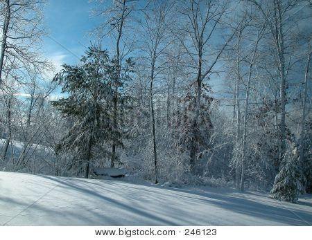 Snow Storm0009