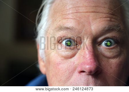 Senior Man High on Marijuana. Stoned Again. A man has Marijuana Leafs in his eyes representing being Stoned On Recreational or Medical Marijuana. Concept Art.