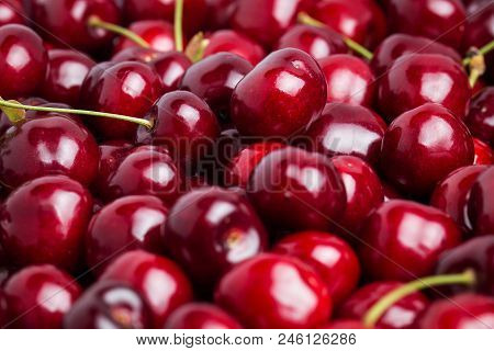Ripe Juicy Cherry Close-up. Without Background, Texture