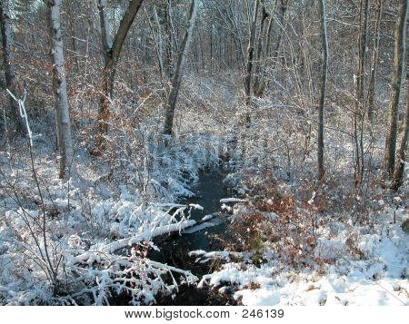 Snow Storm0018