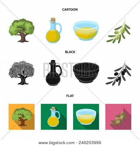 An Olive Tree, A Branch With Olives, A Vessel And A Jug Of Oil. Olives Set Collection Icons In Carto