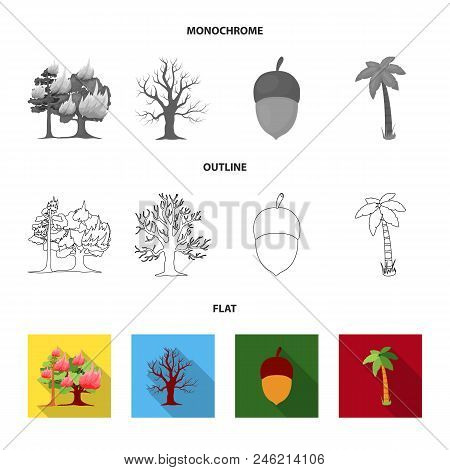 Burning Tree, Palm, Acorn, Dry Tree.forest Set Collection Icons In Flat, Outline, Monochrome Style V