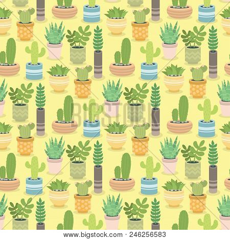 Cactus Green Plant Cactaceous Home Nature Cacti Vector Illustration Of Tree With Flower Seamless Pat