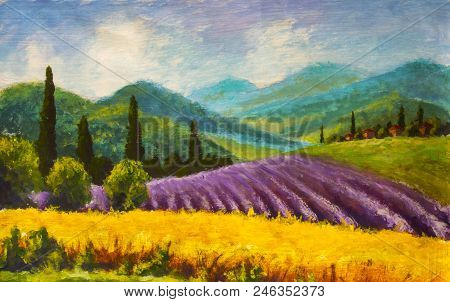 Red Poppies Painting. Italian Lavender Summer Countryside. French Tuscany. Field Of Yellow Rye. Rura