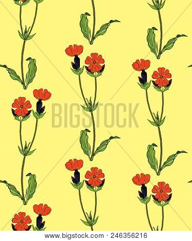 Seamless Pattern With Red Campion Flowers On Yellow Background Stock Vector Illustration.