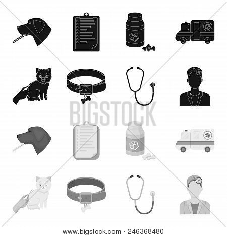 Collar, Bone, Cat, Haircut .vet Clinic Set Collection Icons In Black, Monochrome Style Vector Symbol
