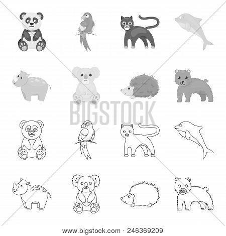 Rhino, Koala, Panther, Hedgehog.animal Set Collection Icons In Outline, Monochrome Style Vector Symb