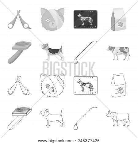 Dog, Cow, Cattle, Pet .vet Clinic Set Collection Icons In Outline, Monochrome Style Vector Symbol St