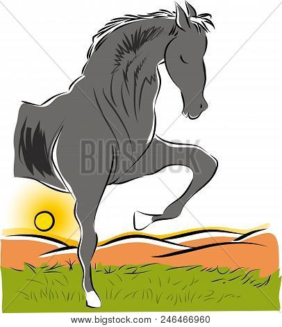 Horse And Nature.  Illustration Of Standing Horse Figure On The Lawns.