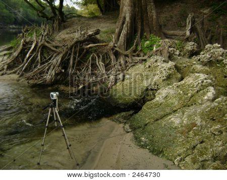 Camerads