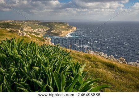 Gozo Landscape, View On Xlendi Bay And Malta, Mediterranean Sea, Winter. Shallow Depth Of Field.