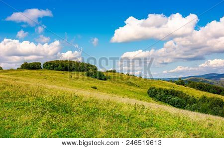 Lovely Mountainous Countryside In Autumn. Forest On A Grassy Hillside Under The Beautiful Cloudy Sky