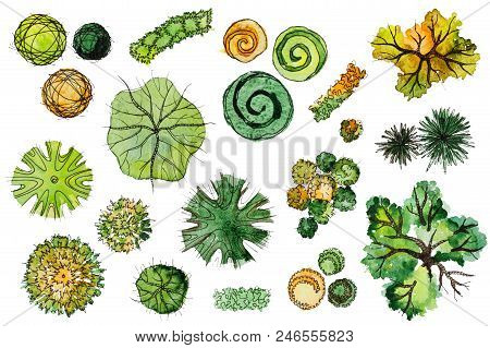 Set Of Hand Drawn Watercolor Pictorial Landscape Design Elements: Plan Of Different Types Of Green,