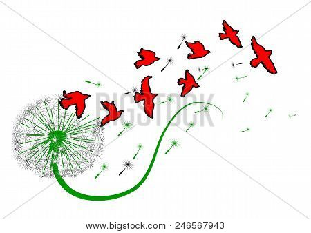Dandelion And Birds Isolated On White Background