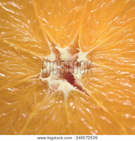 Closeup of fresh orange slice