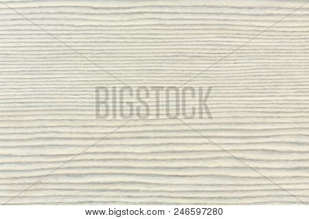 Exclusive White Ebony Wood Texture On Macro Extremely High Resolution Photo