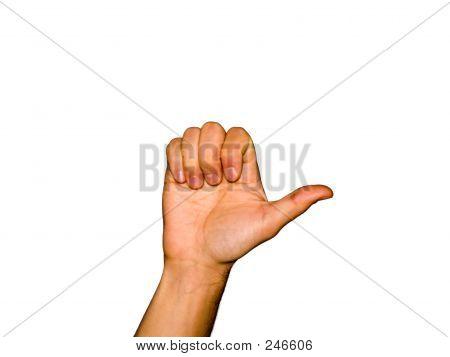 Fingers [9]