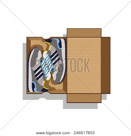 Sneakers In Box. Sneakers In A Cardboard Box. Grey Sneakers In Box. Gray Sneakers In A Cardboard Box