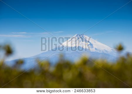 Mount Fuji With Tree And Blue Sky , Japan