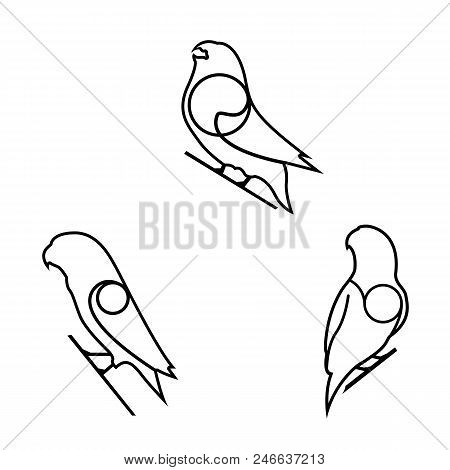 Animal Vector Design, Flat Bird Design Symbol, Modern Line Design With Bird Shape, Thin Line Design