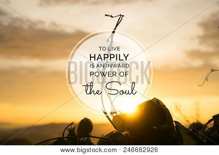 Motivational And Inspirational Quote. Blooming Plant Buds Against Sunset Ray With Happy Life Quote.