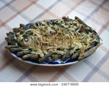 Fried Fish On A Plate, Omsk Region, Siberia, Russia