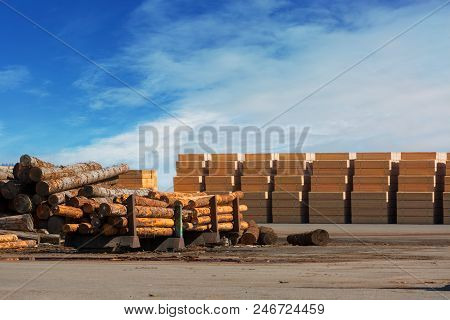 Tree logs and plywood products at Lumber Mill in Rainier Oregon poster