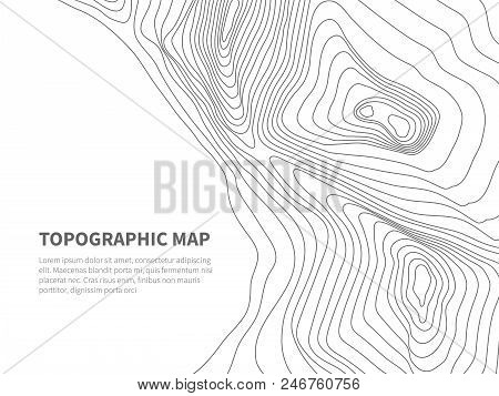 Geodesy Contouring Land. Topographical Line Map. Geographic Mountain Contours Vector Background. Top