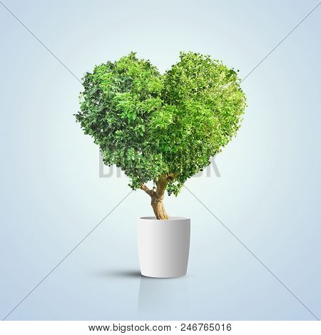 3d Illustration. Green Tree Shaped In Heart Isolated Over Blue Background
