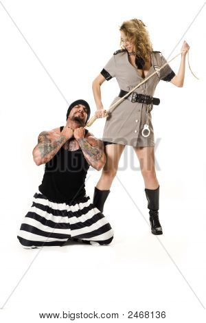 The Criminal And Corections Officer
