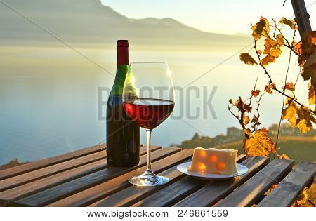 Wine against vineyards in Lavaux, Switzerland