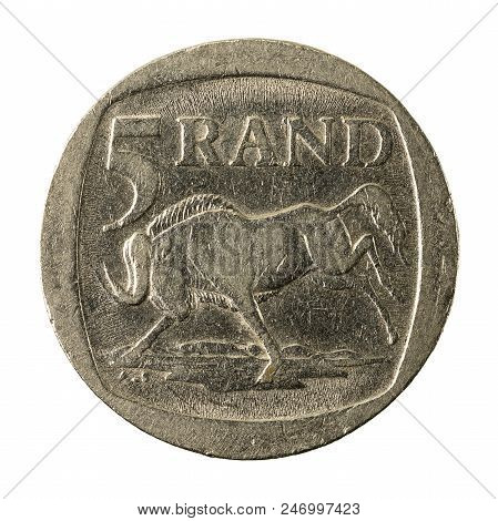 5 South African Rand Coin (2004) Obverse Isolated On White Background