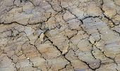 beautiful colored full frame abstract fissured soil structure poster