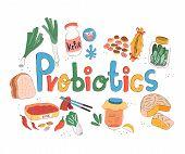 Colorful doodle probiotics rich foods on white background, illustration, vector poster