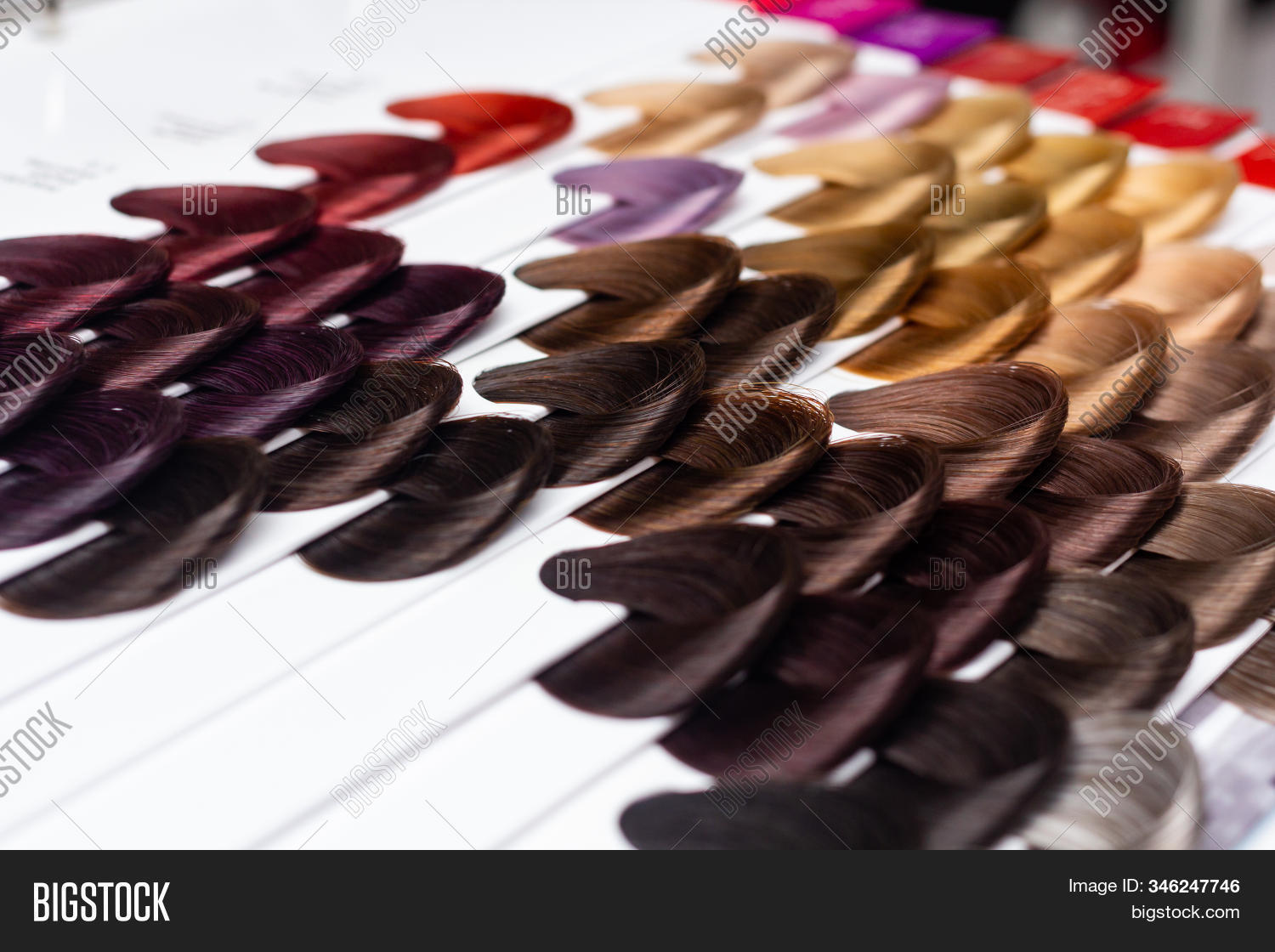 Palette Hair Colors Image Photo Free Trial Bigstock,Shopping Mall Barbra Streisand House