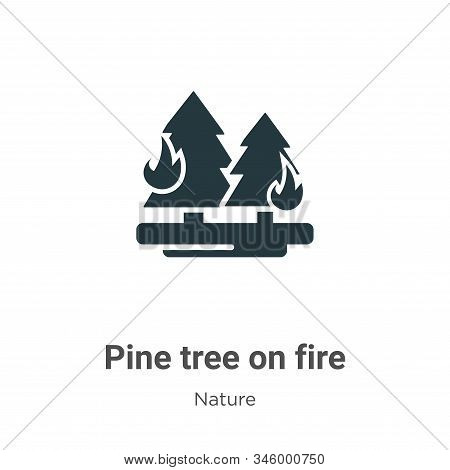 Pine tree on fire icon isolated on white background from nature collection. Pine tree on fire icon t