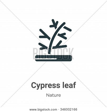 Cypress leaf icon isolated on white background from nature collection. Cypress leaf icon trendy and