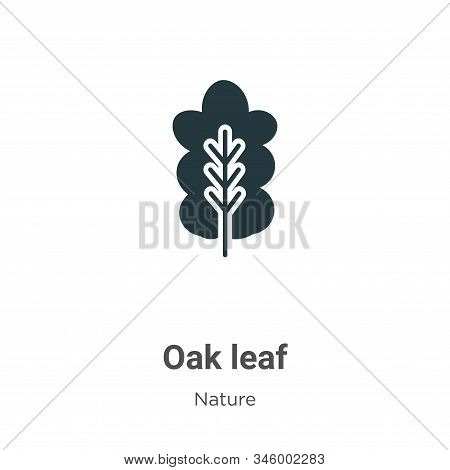 Oak leaf icon isolated on white background from nature collection. Oak leaf icon trendy and modern O