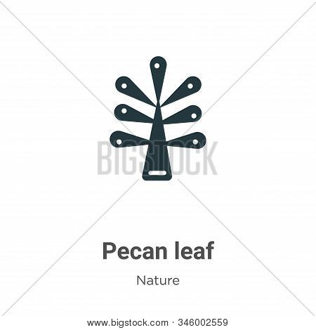 Pecan leaf icon isolated on white background from nature collection. Pecan leaf icon trendy and mode